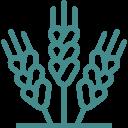 Premio Agroalimentario